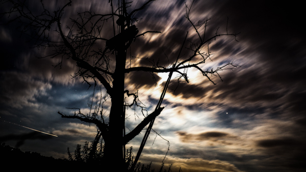 Samhain where Halloween comes from